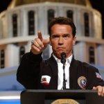 Arnold Schwarzenegger Considering Senate Bid
