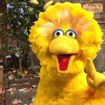 Trump's Budget Would Finally Fire Big Bird, Defund NPR