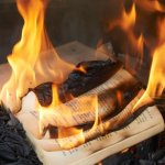 Good Old-Fashioned Book Burning Inadvertently Takes Out 10 Houses