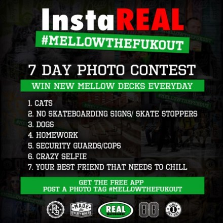 rs_mellow_photo_7day_900