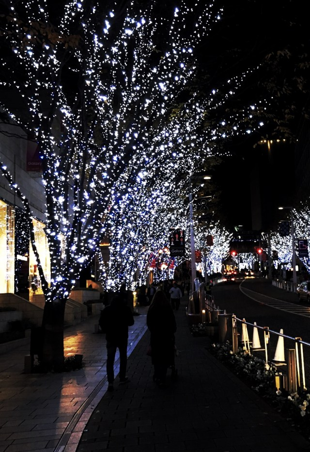 Roppongi Hills Illuminations -Photo by Saki Akane