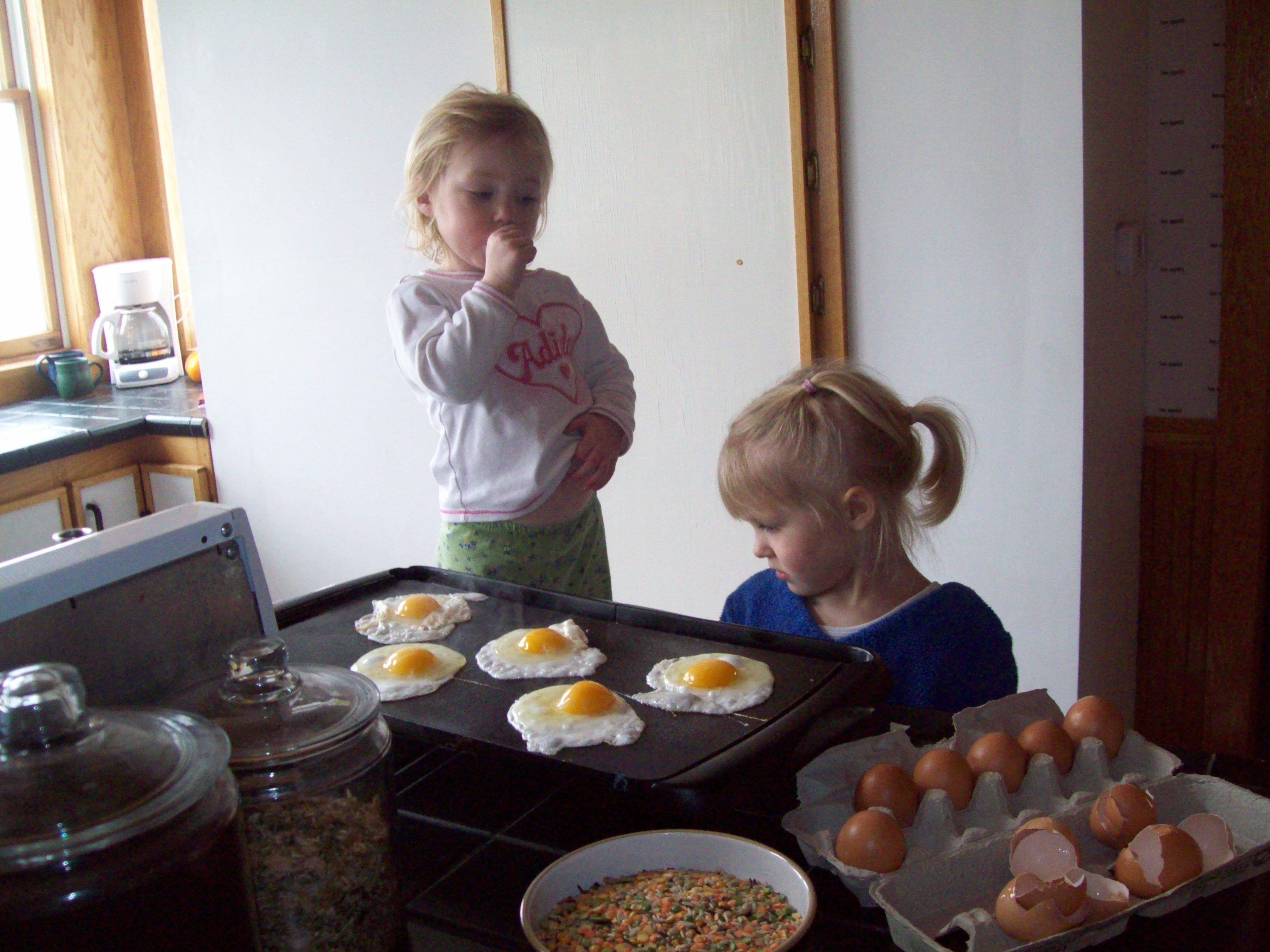 Lunch - Eggs & Oranges