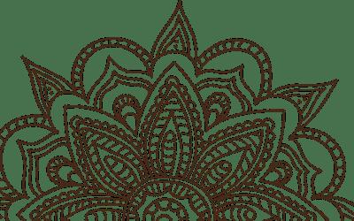 Level 1 Beginner Integral Yoga Workshop