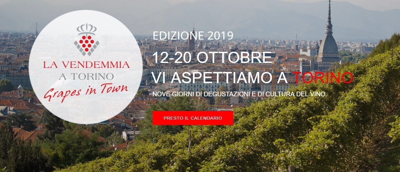 the-harvest-in-turin-–-grapes-in-town,-2020