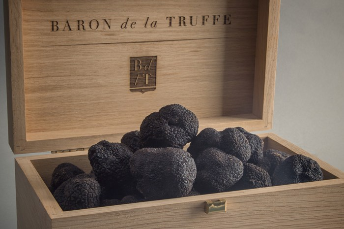 meet-«-ode-to-the-truffle-»-:-our-boook-dedicated-to-the-black-diamond,-prefaced-par-yannick-alleno-and-now-available-in-english!