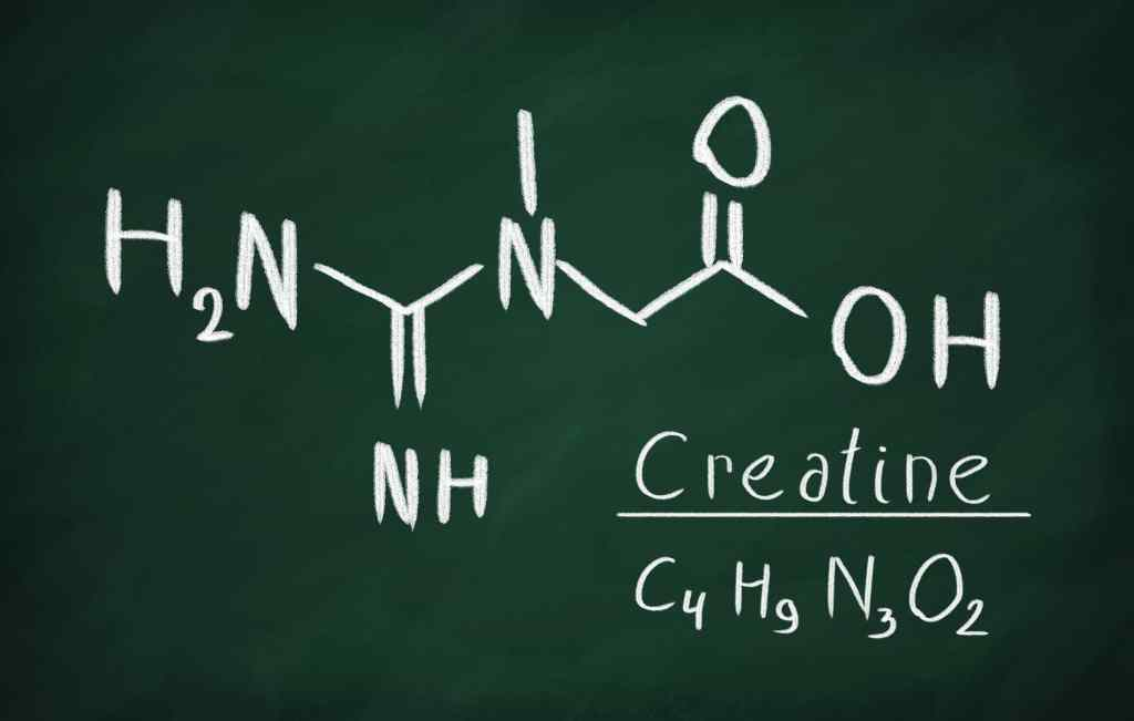 composition of creatine monohydrate