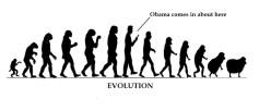 1-evolution-copy-2-003