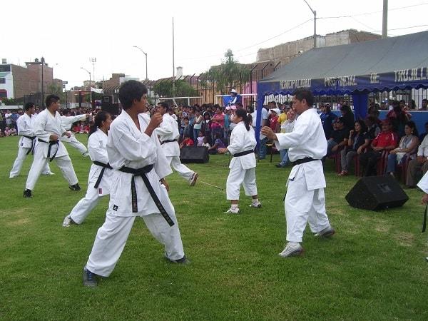 TORNEO REGIONAL APRECIACION DE KARATE ESTE DOMINGO