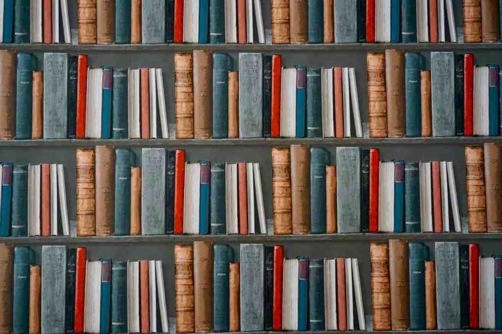 resources to help study the Bible for yourself shelves of books