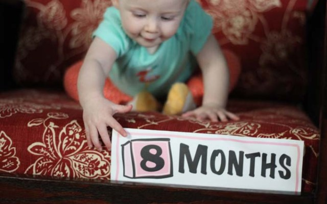 Photos of Eggroll – Month Eight
