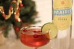Cranberry Vodka Cocktail
