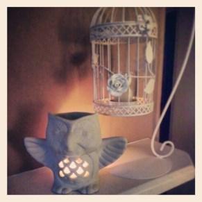 Owl: Evolution, Cage: The Range