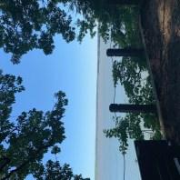 Potomac River Run