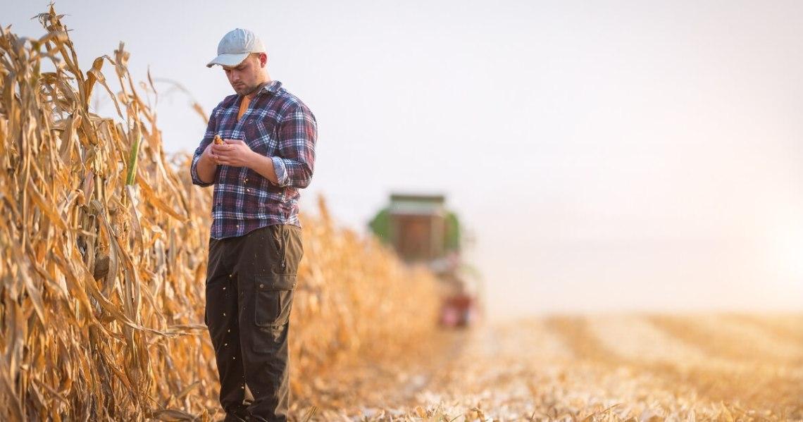corn-farmer.jpg