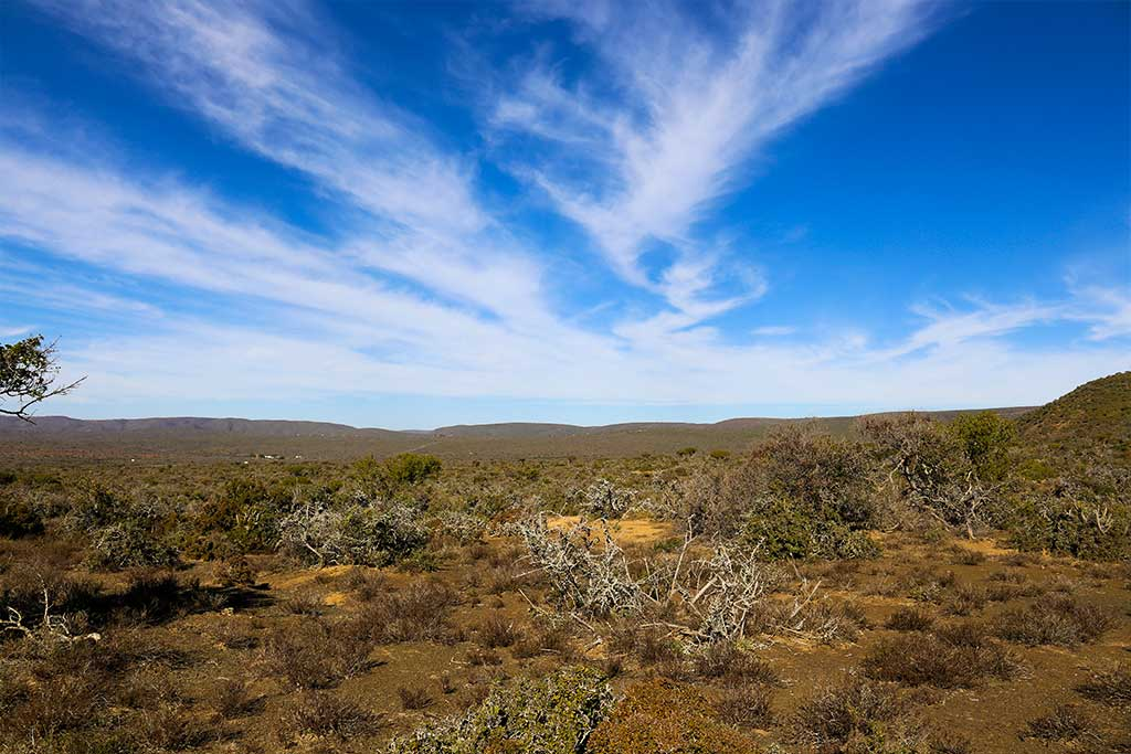 Trumpeters-Drift-Gallery-Beautiful-Clouds-on-the-Reserve