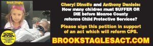 Trump for Children - Brook Stagles A National Crisis