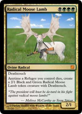 radical-moose-lamb