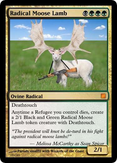 radical-moose-lamb