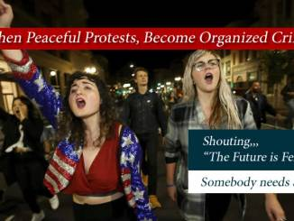 When Peaceful Protests, Become Organized Crime