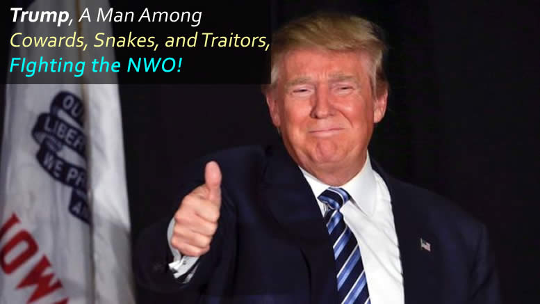Trump, A Man Among Cowards, Snakes, and Traitors, is Fighting the NWO!