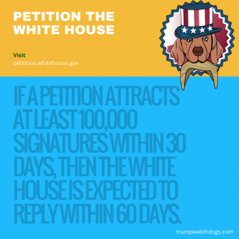 Website for petitioning the White House