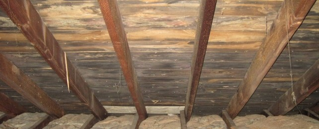 Attic Mold Removal Trupro Restoration