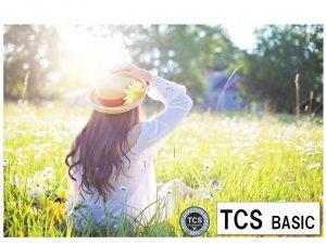 TCS BASIC