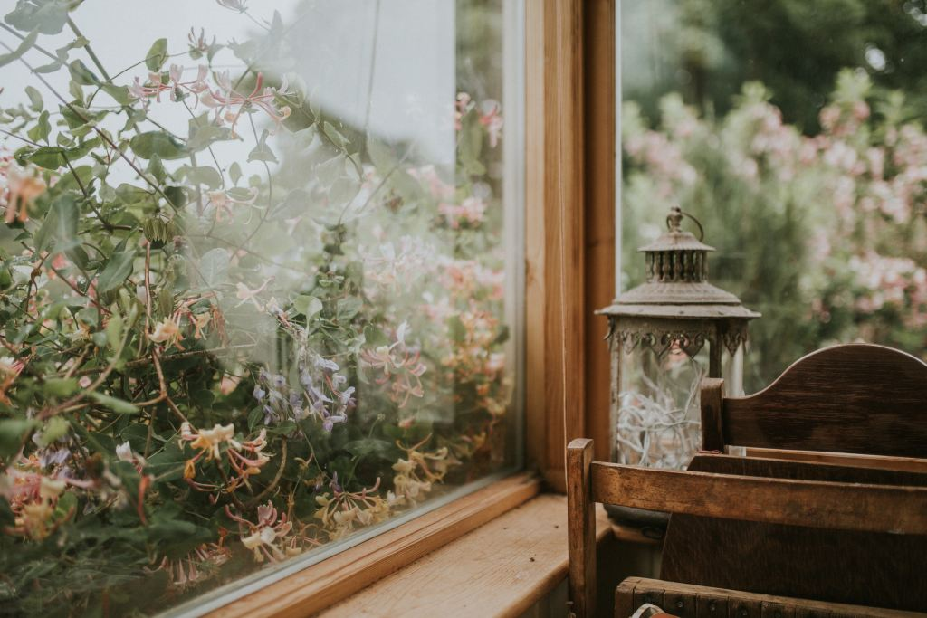 Window View Photo by Felix Russell-Saw on Unsplash