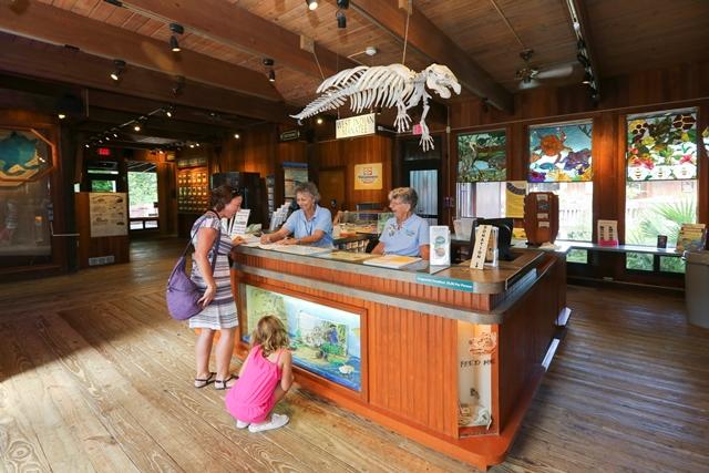 Nature Center  Gumbo Limbo Nature Center