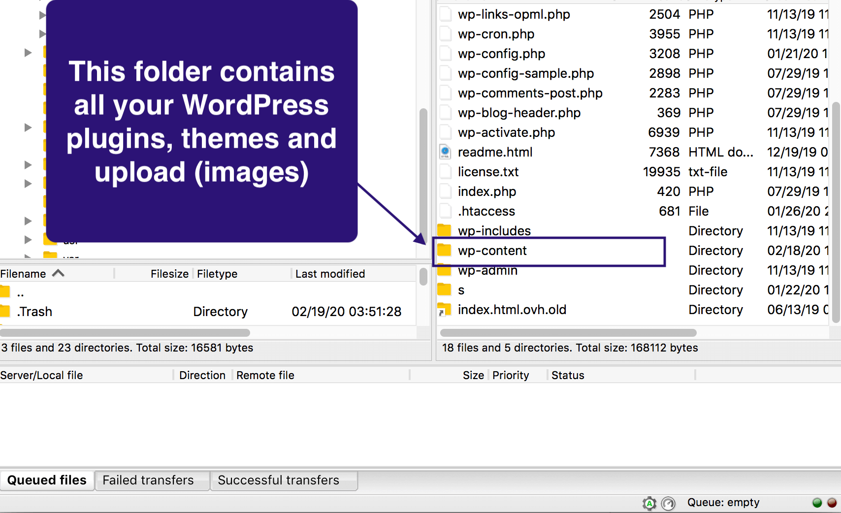 opening the wp-content folder