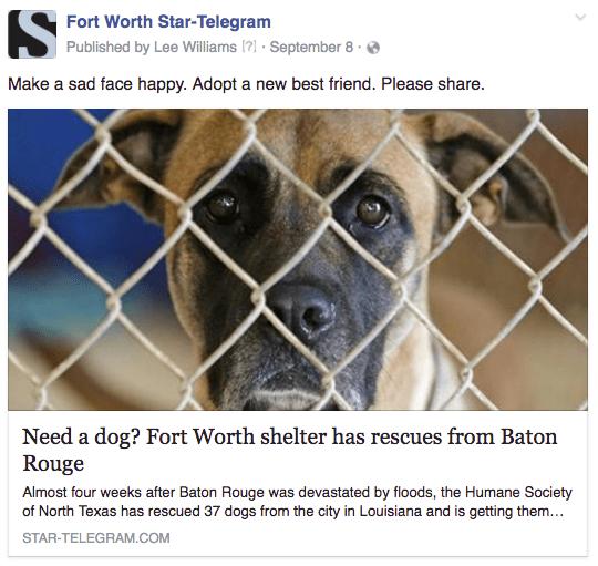 FW Baton Rouge dogs