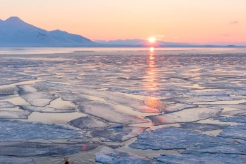 arctique calotte glacière glace geler