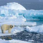 Une partie de la banquise arctique s'amincit deux fois plus vite qu'on ne le pensait auparavant