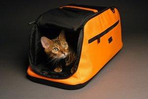 10. Sleepypod Air In-Cabin Pet Carrier