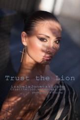 lion_IMG_2914 copy