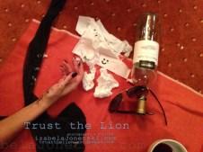 lion_what happened last night.. copy