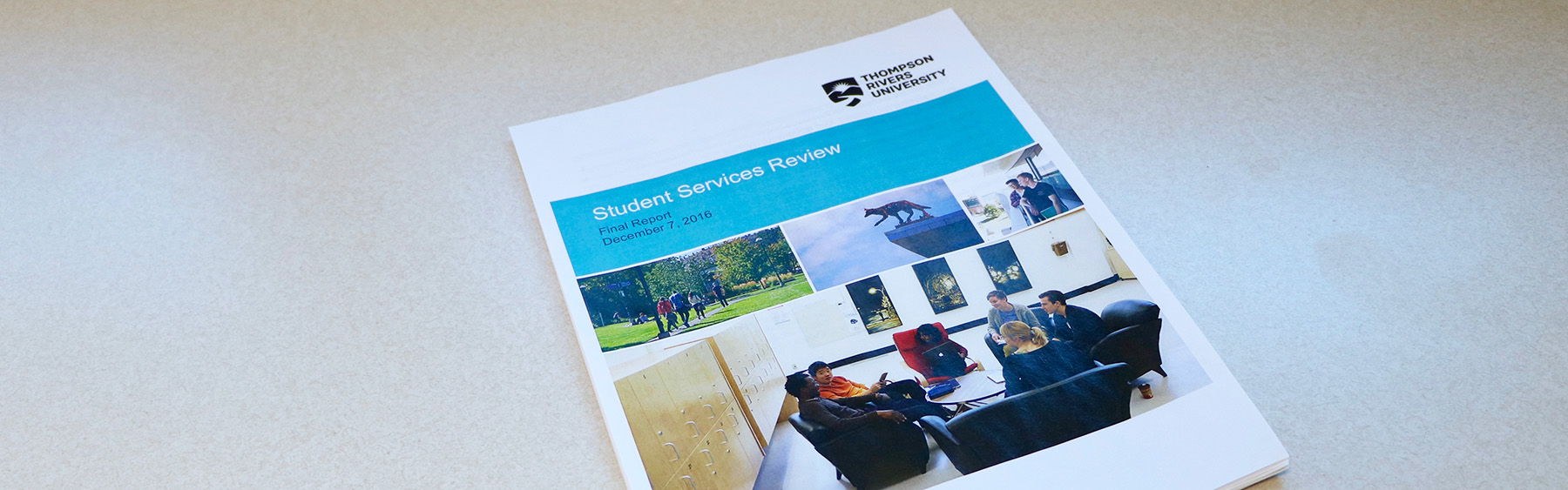 Student Services Review