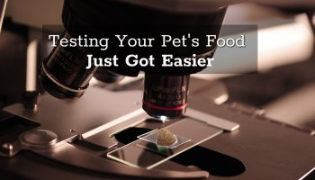 It Is Not Junk Science Truth About Pet Food