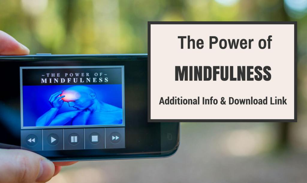 The Power of Mindfulness pdf ebook download.