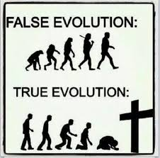False evolution vs. true evolution