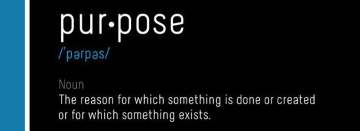 The definition of purpose, according to The Governance Coach