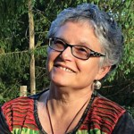 Cate Woolner Professional Conflict Resolution Practitioner and Trainer