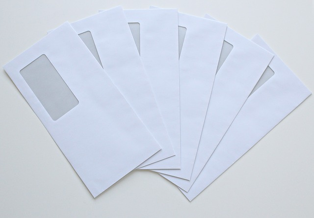 useful envelopes for your money bills