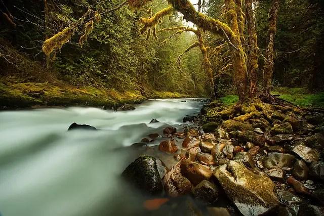 creek-731483_1280