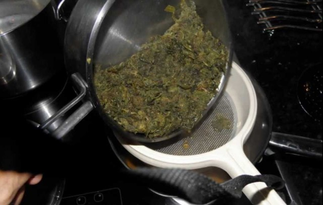 Image result for This Is The Cannabis Oil Recipe Rick Simpson Used To Heal His Cancer And Recommends To Others
