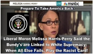 Melissa Harris-Perry - Perry-ObamaCare - 10_00_22 AM