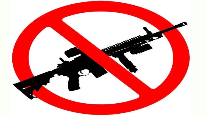 Charleston County S.C. Moves To Support 'Assault Weapon' Ban (Video)