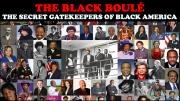 Black Boule