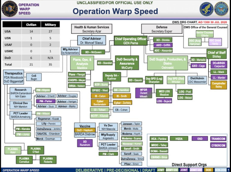 Warp Speed Organization Chart