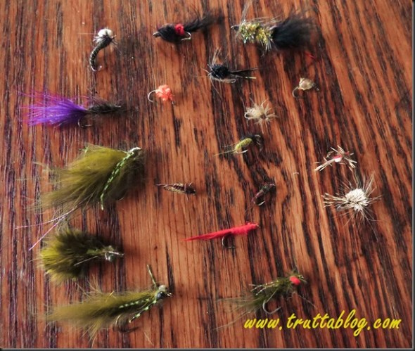 Trout flies (1 of 1)